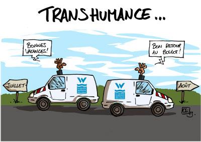 SWDE034_transhumance